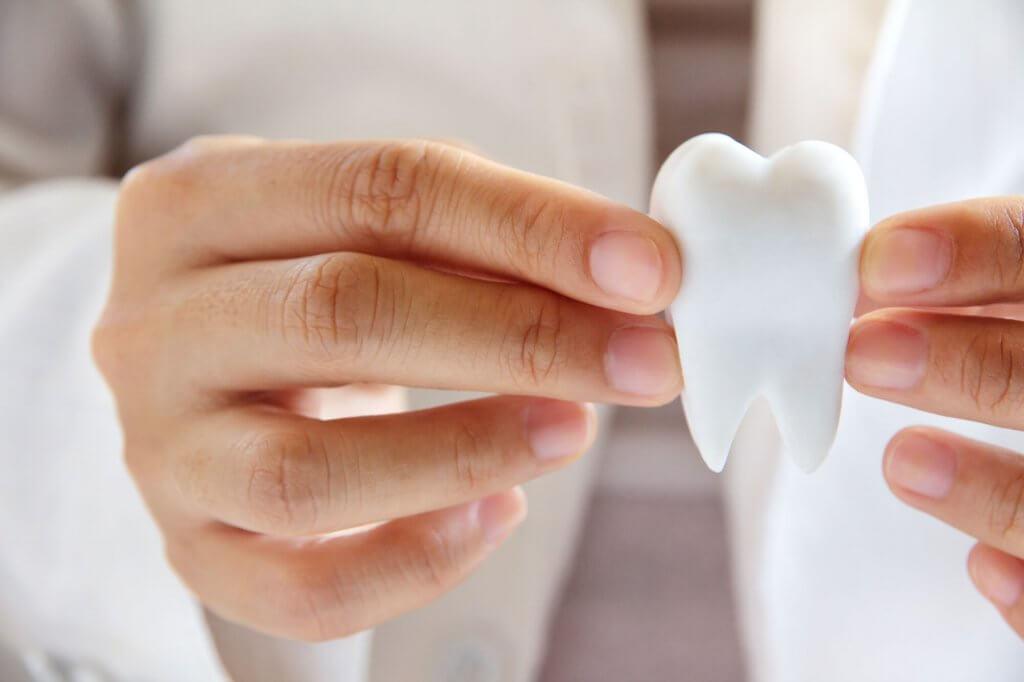 what is an endodontist north miami?